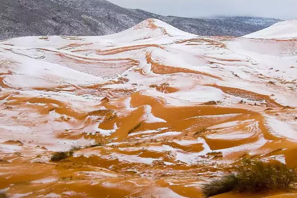 Sahara temperature