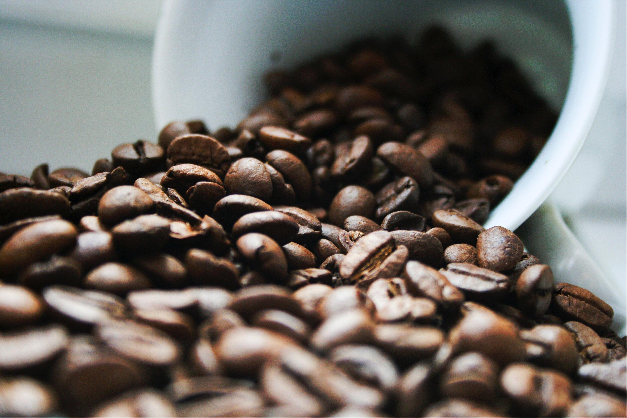 bulk organic coffee